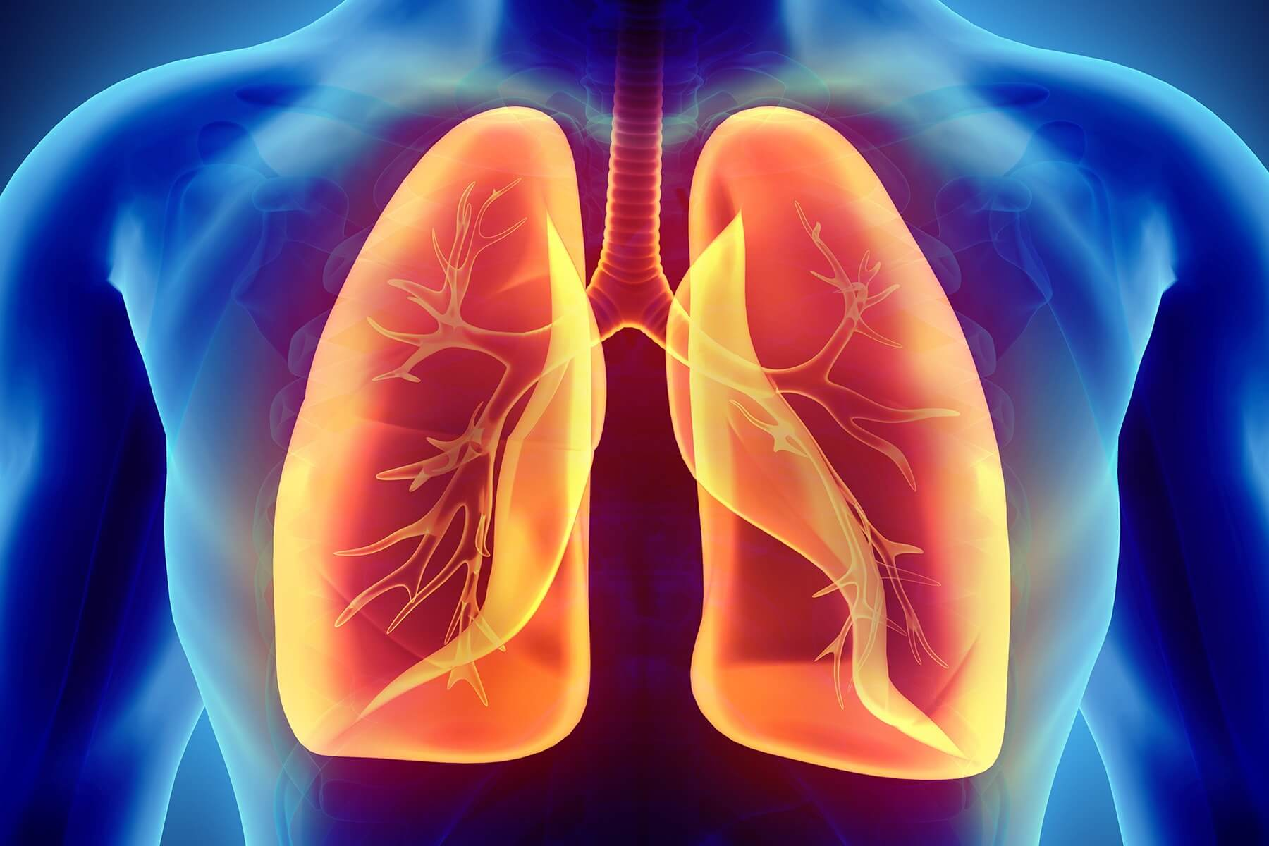 Love Your Lungs Week – how does COVID-19 affect our lungs